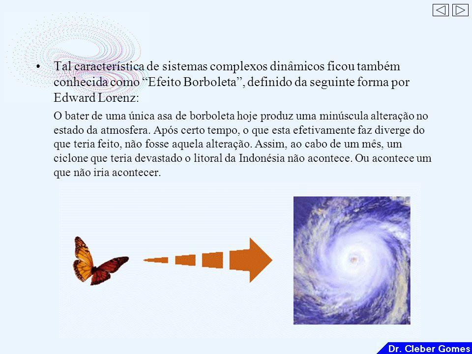 Tal característica de sistemas complexos dinâmicos ficou também conhecida como Efeito Borboleta, definido da seguinte forma por Edward Lorenz: O bater de uma única asa de borboleta hoje produz uma minúscula alteração no estado da atmosfera.