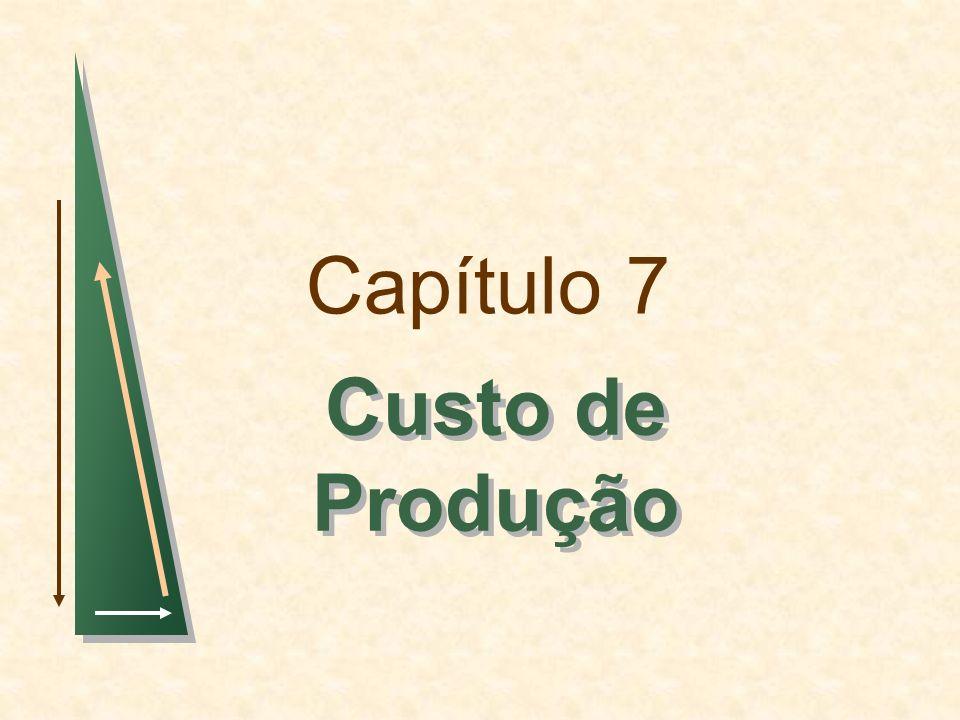 Capítulo 7Slide 82 Produção com dois Produtos -- Economias de Escopo Exemplos: Granja de galinhasaves e ovos Indústria automobilísticaautomóveis e caminhões Universidadeensino e pesquisa