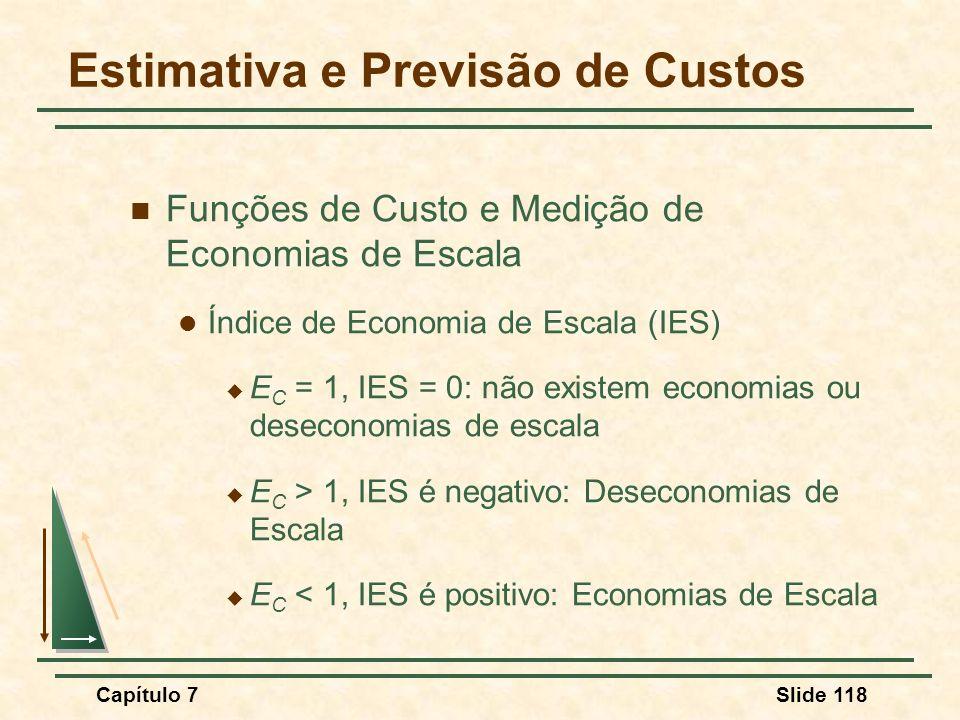 Capítulo 7Slide 118 Funções de Custo e Medição de Economias de Escala Índice de Economia de Escala (IES) E C = 1, IES = 0: não existem economias ou de