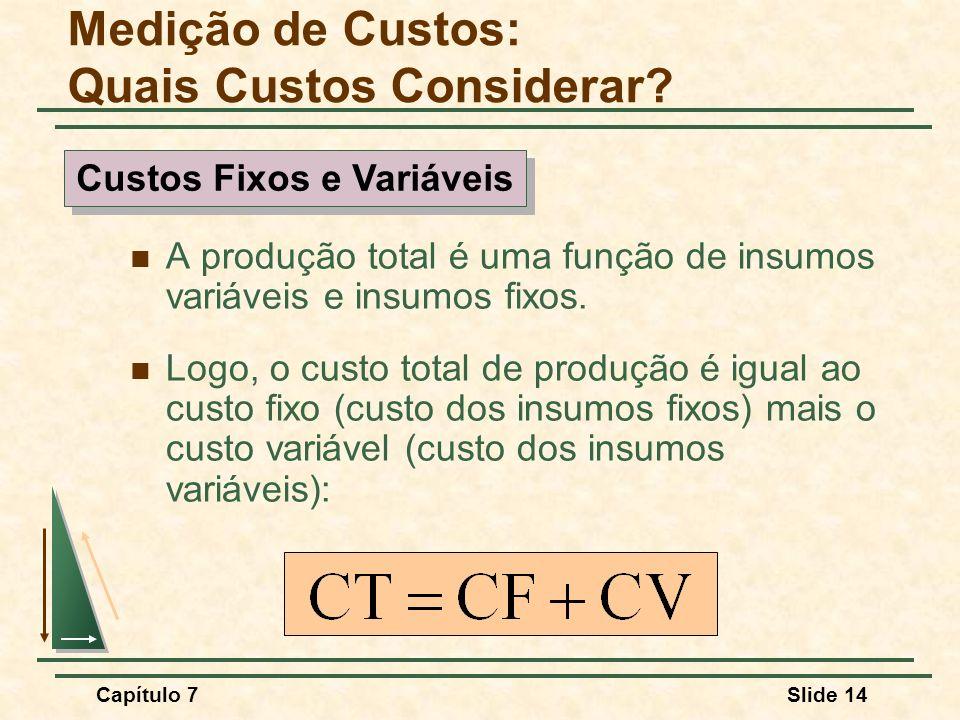 Capítulo 7Slide 14 A produção total é uma função de insumos variáveis e insumos fixos. Logo, o custo total de produção é igual ao custo fixo (custo do
