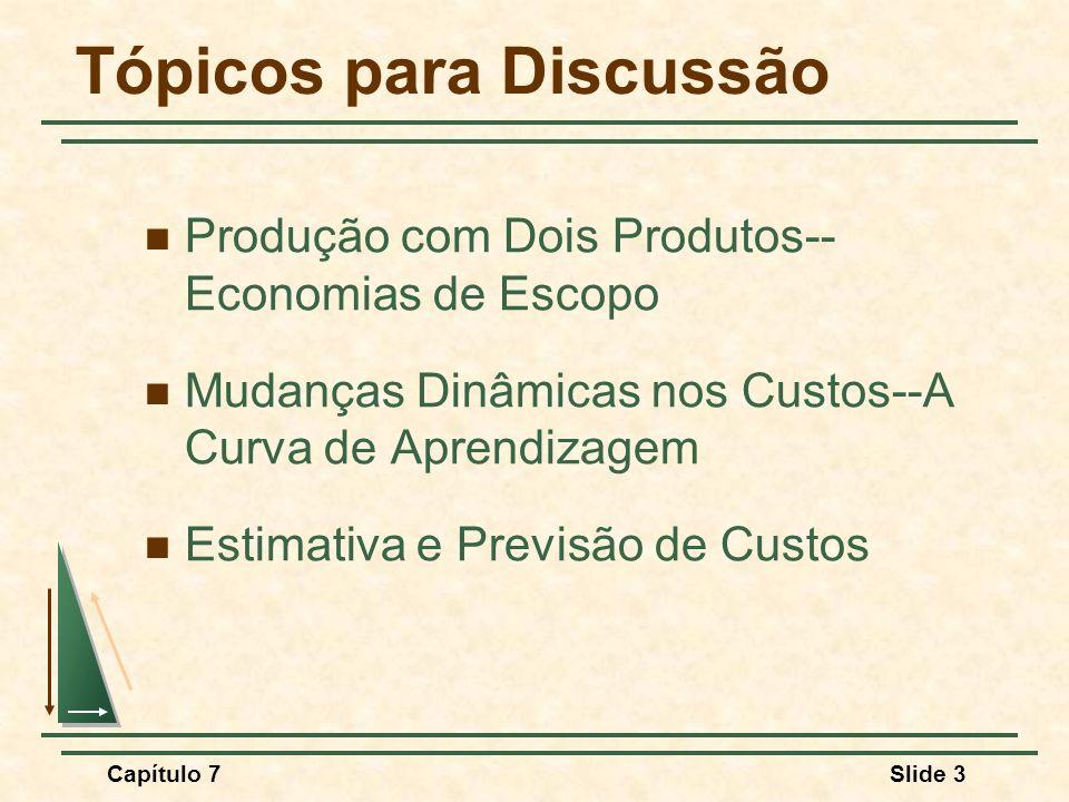 Capítulo 7Slide 3 Tópicos para Discussão Produção com Dois Produtos-- Economias de Escopo Mudanças Dinâmicas nos Custos--A Curva de Aprendizagem Estim