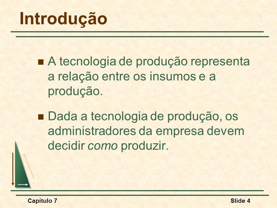 Capítulo 7Slide 4 Introdução A tecnologia de produção representa a relação entre os insumos e a produção. Dada a tecnologia de produção, os administra