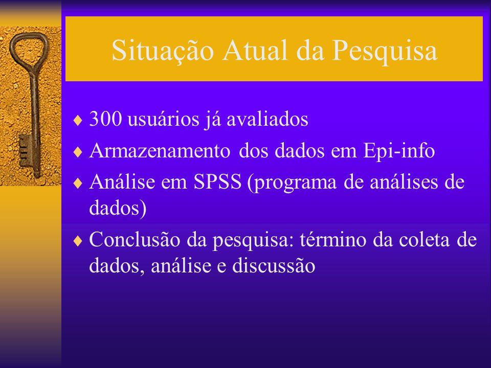 Situação Atual da Pesquisa 300 usuários já avaliados Armazenamento dos dados em Epi-info Análise em SPSS (programa de análises de dados) Conclusão da