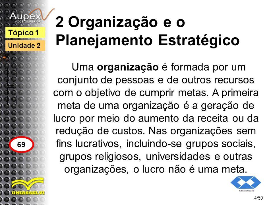 2 Organização e o Planejamento Estratégico Uma organização é formada por um conjunto de pessoas e de outros recursos com o objetivo de cumprir metas.