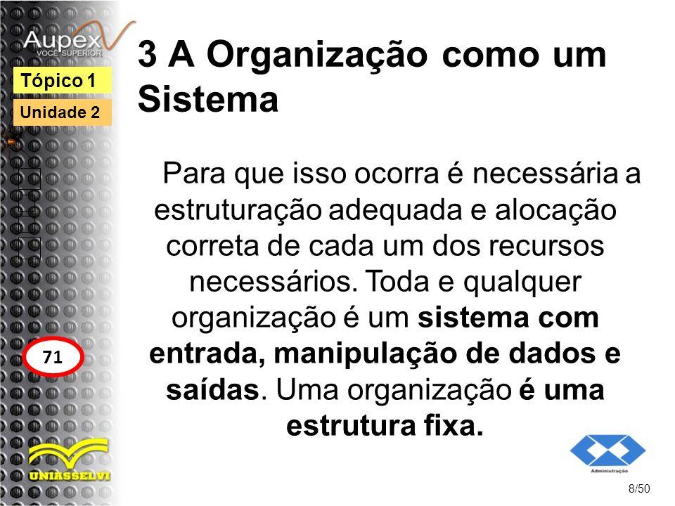 3 A Organização como um Sistema Para que isso ocorra é necessária a estruturação adequada e alocação correta de cada um dos recursos necessários. Toda
