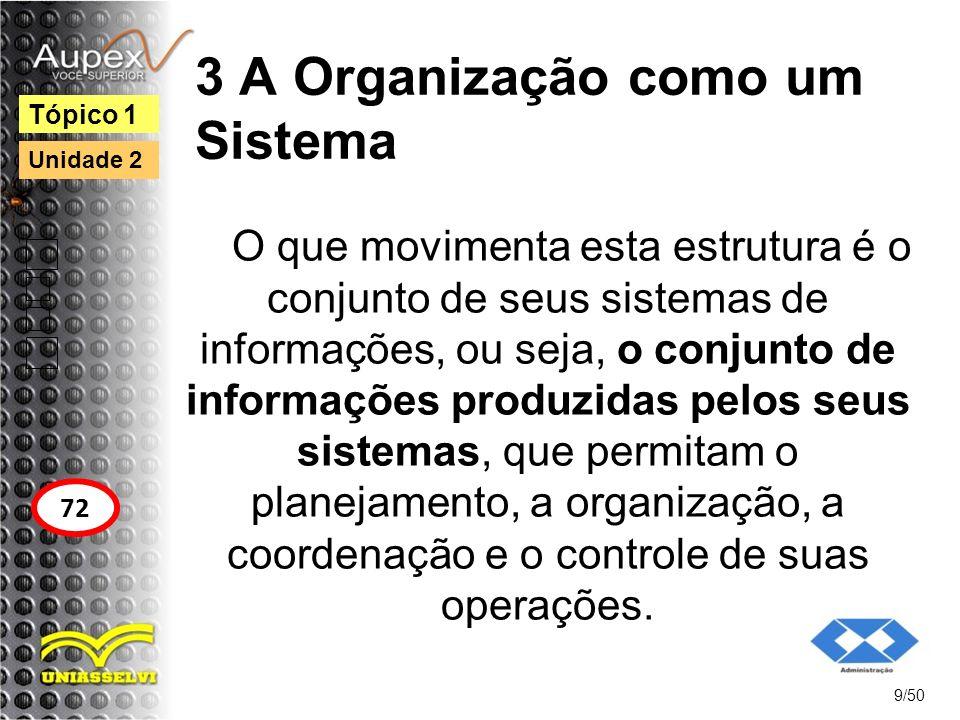 3 A Organização como um Sistema O que movimenta esta estrutura é o conjunto de seus sistemas de informações, ou seja, o conjunto de informações produz