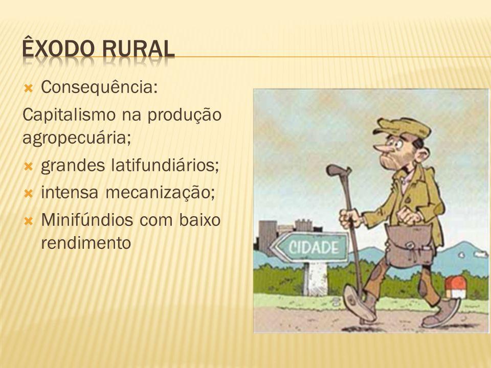 Consequência: Capitalismo na produção agropecuária; grandes latifundiários; intensa mecanização; Minifúndios com baixo rendimento