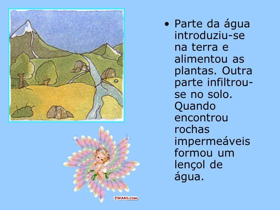 Parte da água introduziu-se na terra e alimentou as plantas. Outra parte infiltrou- se no solo. Quando encontrou rochas impermeáveis formou um lençol