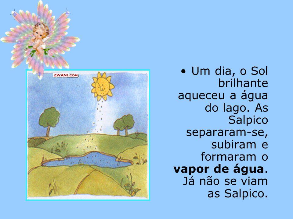 Um dia, o Sol brilhante aqueceu a água do lago. As Salpico separaram-se, subiram e formaram o vapor de água. Já não se viam as Salpico.
