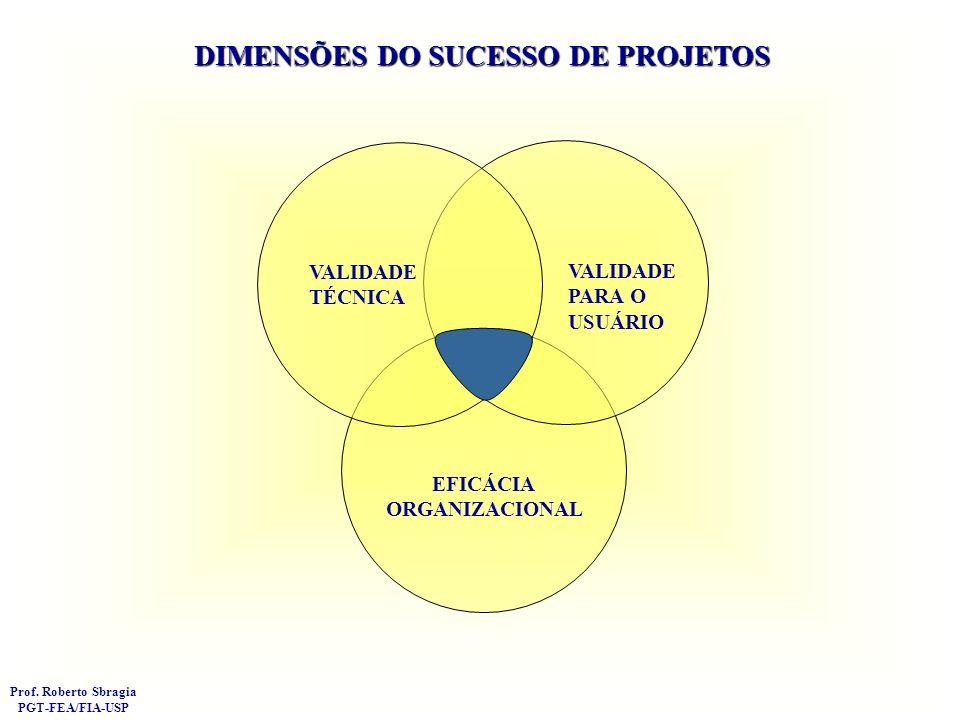 DETERMINANTES DE SUCESSO (FCS- Fatores Críticos de Sucesso) CRITÉRIOS DE SUCESSO (Critérios de Desempenho) AMBIENTE EXTERNO ORGANIZAÇÃO MÃE GERENCIA DO PROJETO SUCESSO/FRACASSO NATUREZA DO PROJETO EM SI Porte Complexidade Etc.