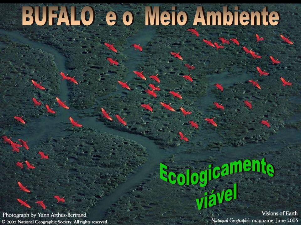 ...p/ o Pantanal. É...