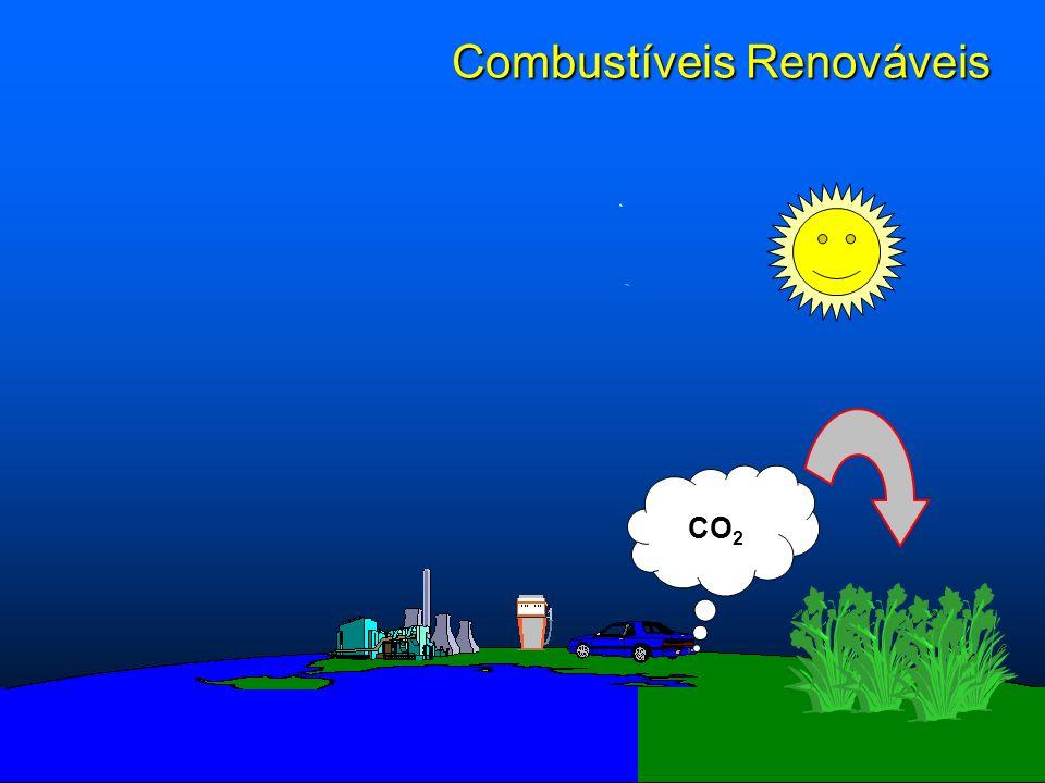 Combustíveis Renováveis CO 2