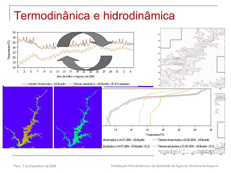 Faro, 3 de Dezembro de 2008 Modelação Hidrodinâmica e da Qualidade da Água da Albufeira de Alqueva Termodinânica e hidrodinâmica