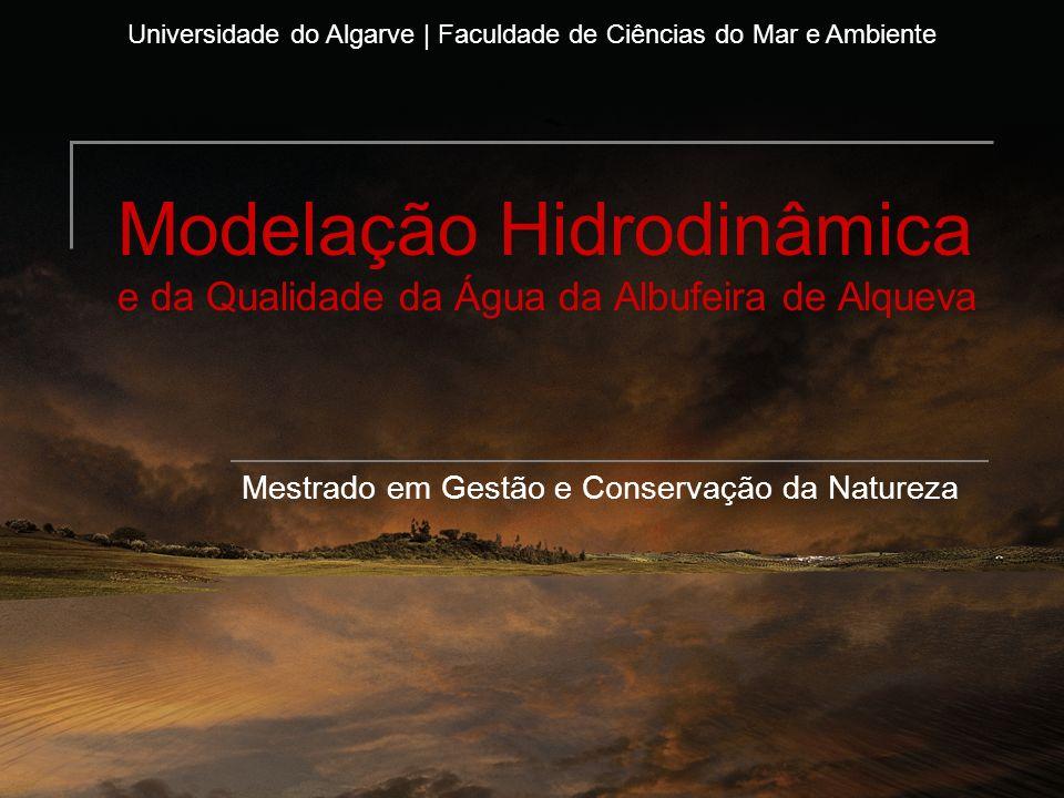 Modelação Hidrodinâmica e da Qualidade da Água da Albufeira de Alqueva Mestrado em Gestão e Conservação da Natureza Universidade do Algarve | Faculdad
