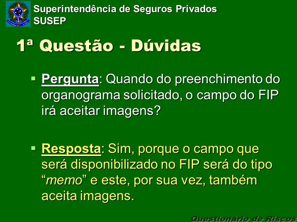 Superintendência de Seguros Privados SUSEP 1ª Questão - Dúvidas Pergunta: Quando do preenchimento do organograma solicitado, o campo do FIP irá aceitar imagens.