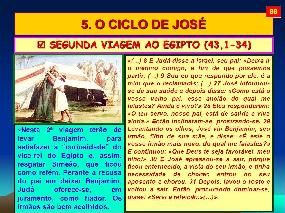 5. O CICLO DE JOSÉ «(…) 8 E Judá disse a Israel, seu pai: «Deixa ir o menino comigo, a fim de que possamos partir; (…) 9 Sou eu que respondo por ele;