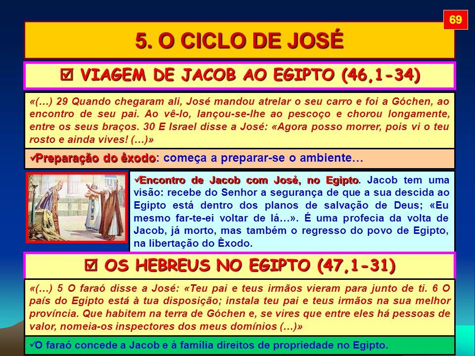 5. O CICLO DE JOSÉ «(…) 29 Quando chegaram ali, José mandou atrelar o seu carro e foi a Góchen, ao encontro de seu pai. Ao vê-lo, lançou-se-lhe ao pes