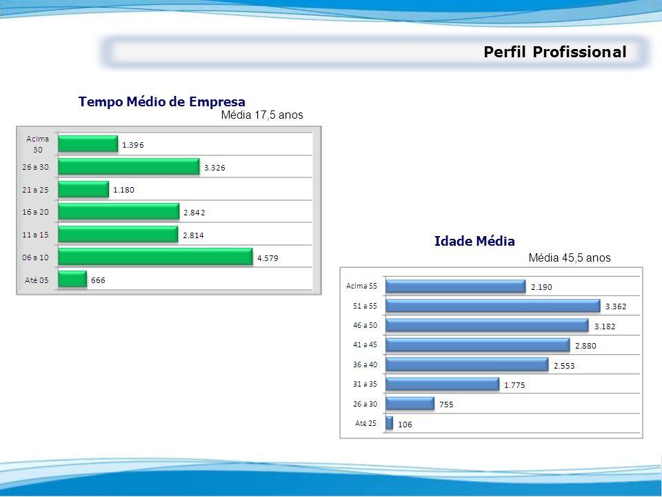 Tempo Médio de Empresa Idade Média Média 45,5 anos Média 17,5 anos Perfil Profissional