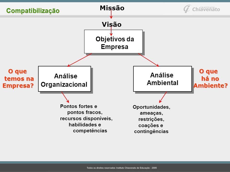 Missão Visão Objetivos da Empresa Análise Organizacional Análise Ambiental O que temos na temos naEmpresa? O que há no há noAmbiente? Pontos fortes e