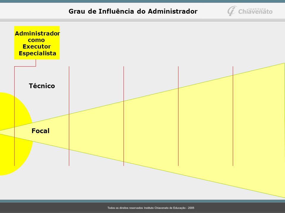 Administrador como Executor Especialista Técnico Focal Grau de Influência do Administrador