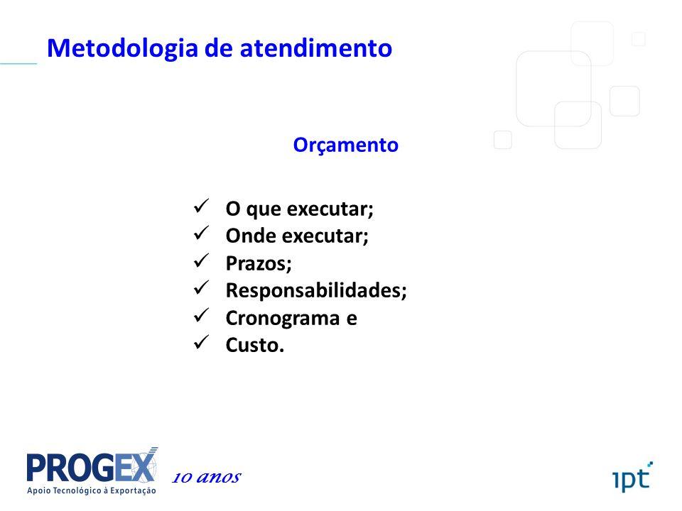 Metodologia de atendimento Orçamento O que executar; Onde executar; Prazos; Responsabilidades; Cronograma e Custo. 10 anos