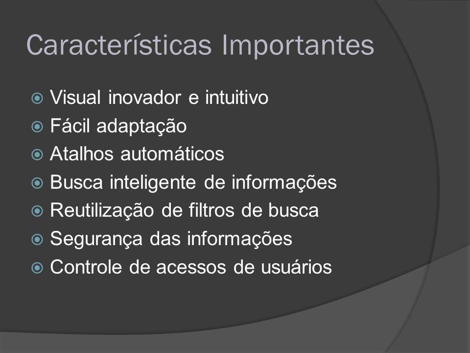 Características Importantes Visual inovador e intuitivo Fácil adaptação Atalhos automáticos Busca inteligente de informações Reutilização de filtros d