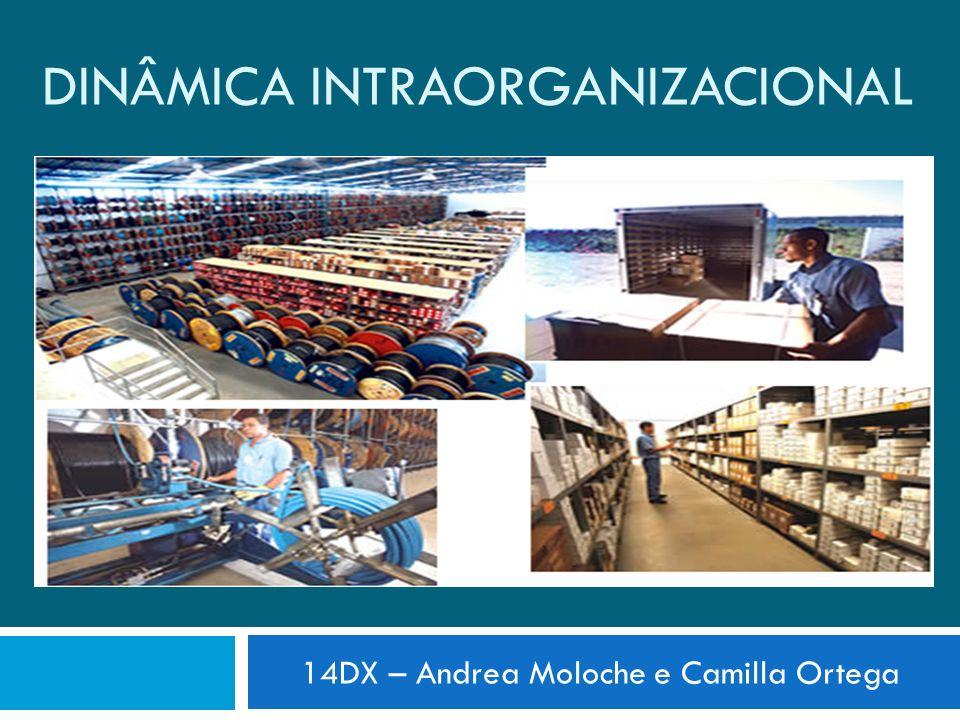 DINÂMICA INTRAORGANIZACIONAL 14DX – Andrea Moloche e Camilla Ortega