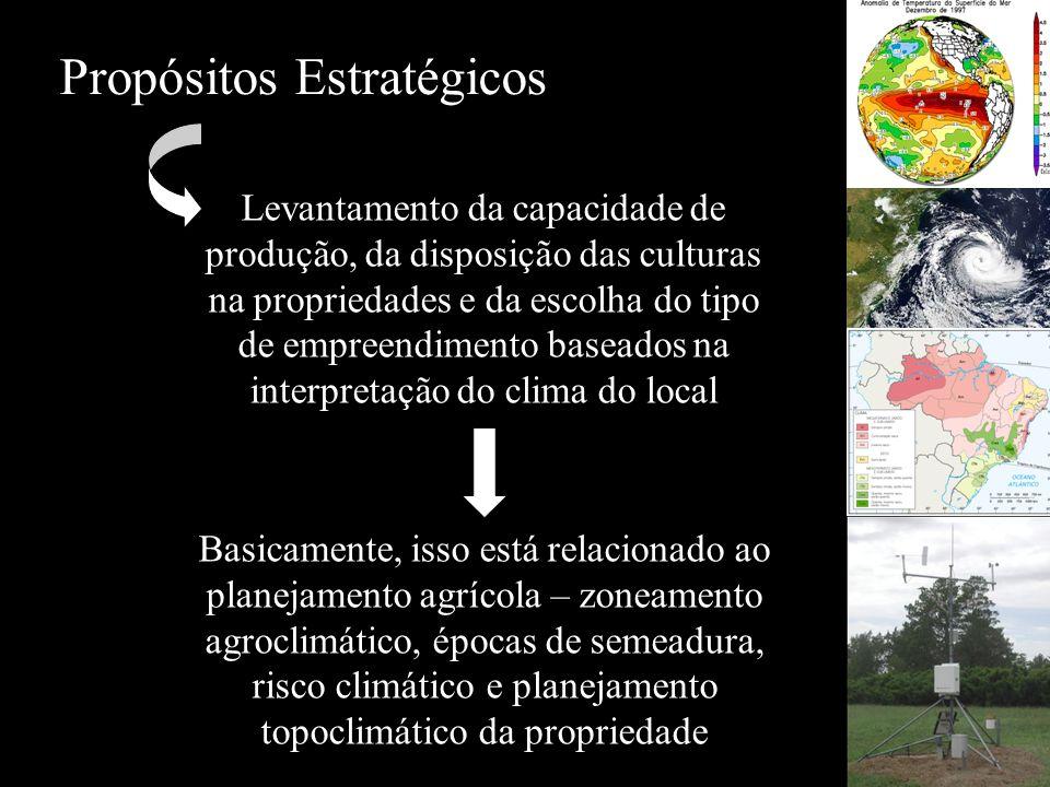 Propósitos Estratégicos Levantamento da capacidade de produção, da disposição das culturas na propriedades e da escolha do tipo de empreendimento base