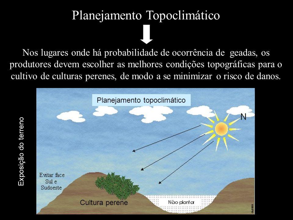 Planejamento Topoclimático Nos lugares onde há probabilidade de ocorrência de geadas, os produtores devem escolher as melhores condições topográficas
