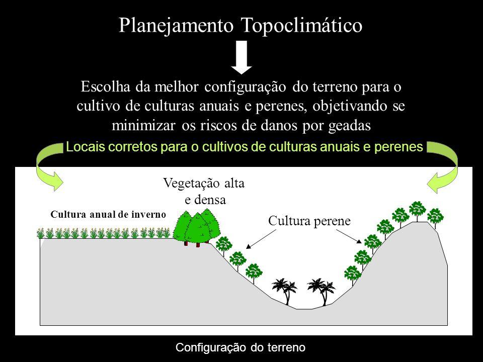 Locais corretos para o cultivos de culturas anuais e perenes Cultura anual de inverno Cultura perene Vegetação alta e densa Planejamento Topoclimático