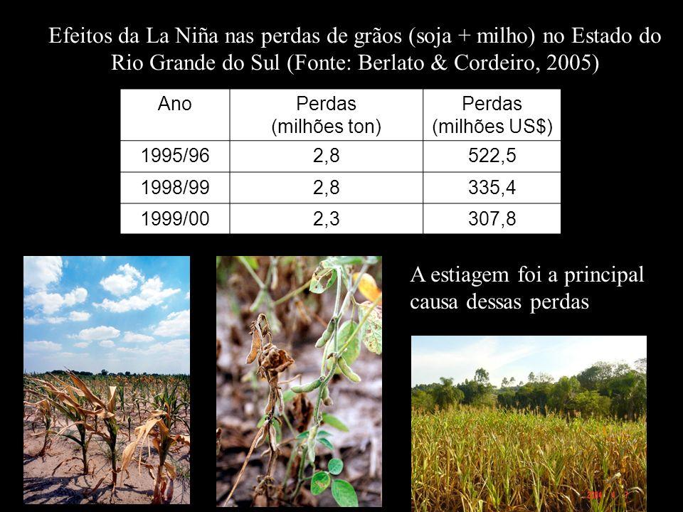 Efeitos da La Niña nas perdas de grãos (soja + milho) no Estado do Rio Grande do Sul (Fonte: Berlato & Cordeiro, 2005) A estiagem foi a principal caus