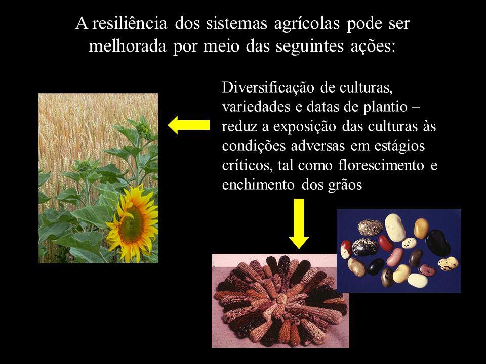 A resiliência dos sistemas agrícolas pode ser melhorada por meio das seguintes ações: Diversificação de culturas, variedades e datas de plantio – redu