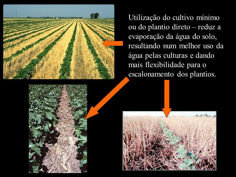 Utilização do cultivo mínimo ou do plantio direto – reduz a evaporação da água do solo, resultando num melhor uso da água pelas culturas e dando mais