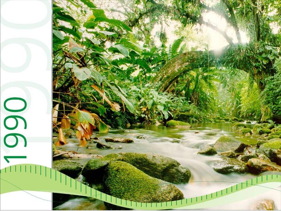 Criação da Fundação O Boticário de Proteção à Natureza