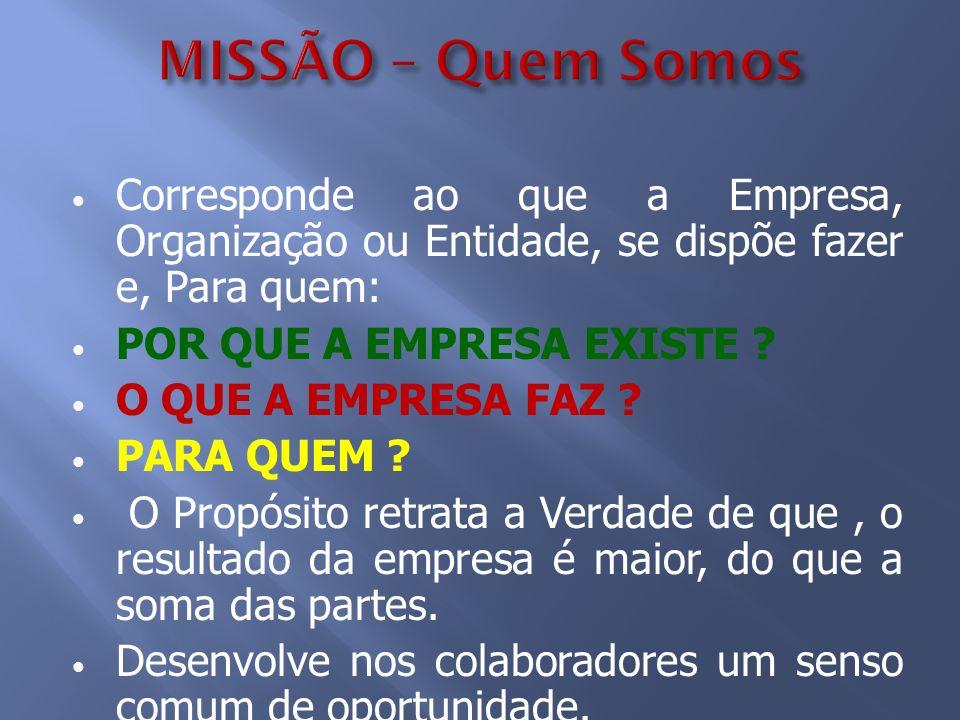 MISSÃO – Quem Somos Corresponde ao que a Empresa, Organização ou Entidade, se dispõe fazer e, Para quem: POR QUE A EMPRESA EXISTE ? O QUE A EMPRESA FA