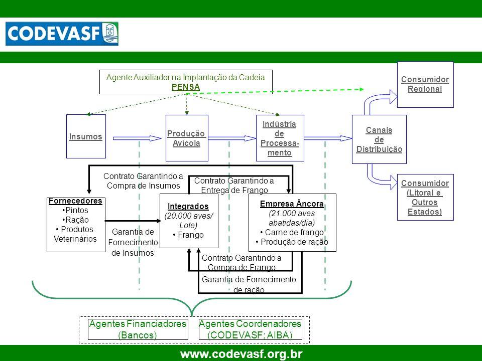 10 www.codevasf.org.br Insumos Indústria de Processa- mento Canais de Distribuição Consumidor Regional Consumidor (Litoral e Outros Estados) Fornecedo