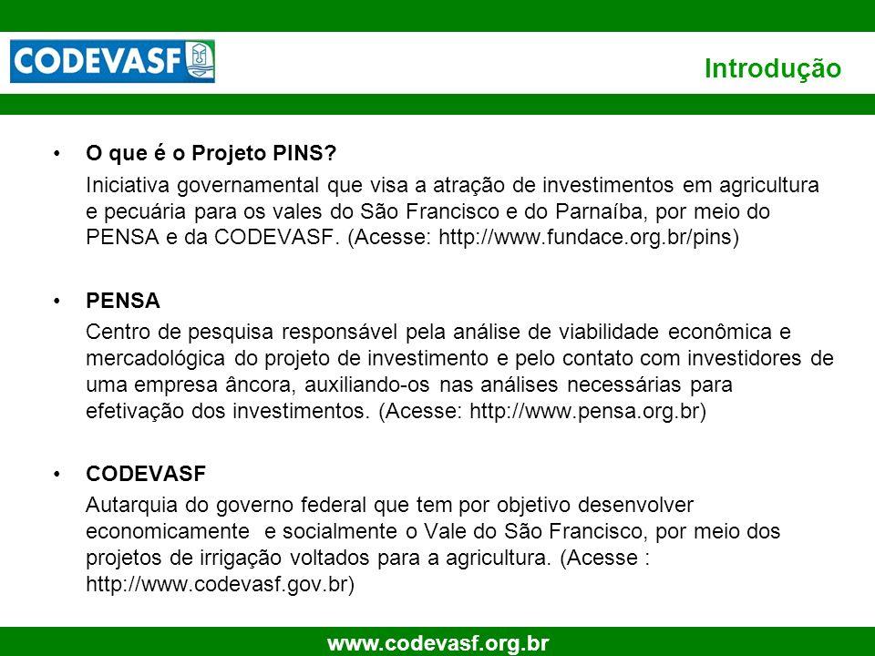 3 www.codevasf.org.br Introdução O que é o Projeto PINS? Iniciativa governamental que visa a atração de investimentos em agricultura e pecuária para o