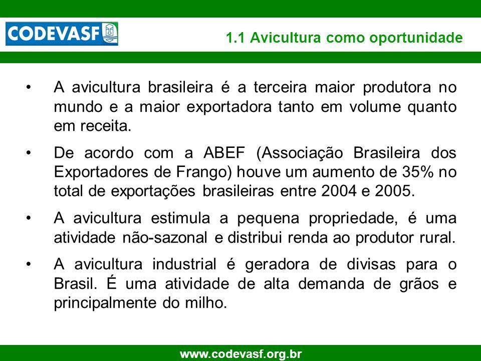 6 www.codevasf.org.br 1.1 Avicultura como oportunidade A avicultura brasileira é a terceira maior produtora no mundo e a maior exportadora tanto em vo