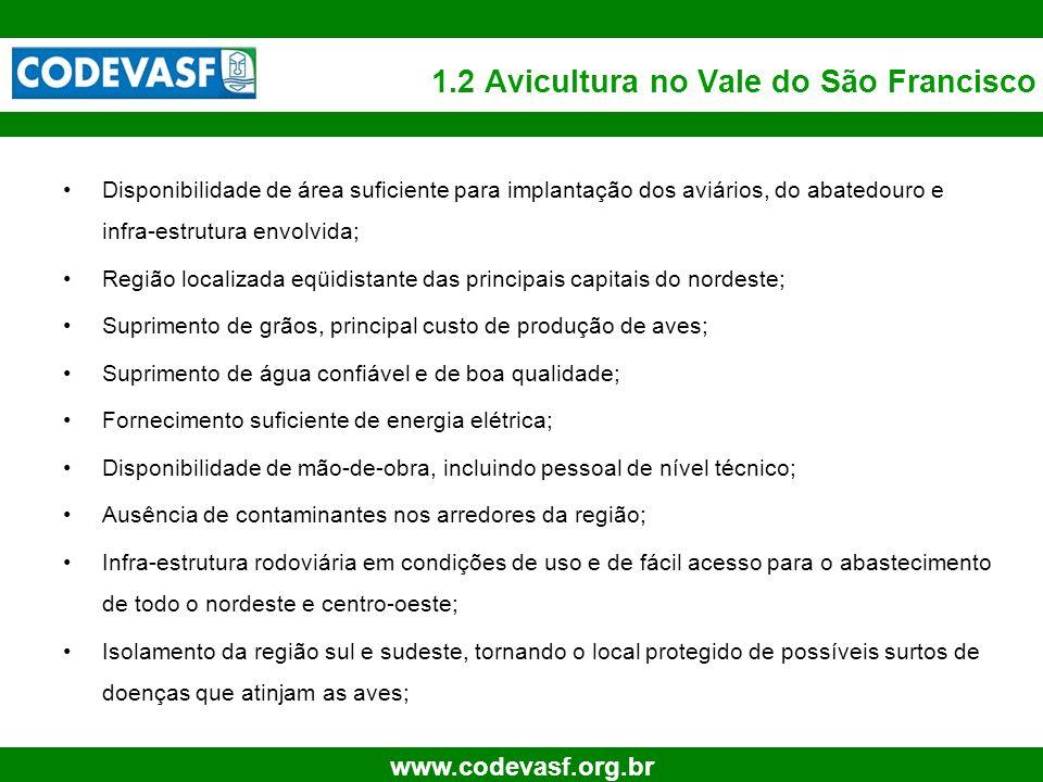 7 www.codevasf.org.br 1.2 Avicultura no Vale do São Francisco Disponibilidade de área suficiente para implantação dos aviários, do abatedouro e infra-