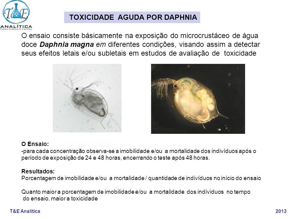 T&E Analítica 2013 O ensaio consiste básicamente na exposição do microcrustáceo de água doce Daphnia magna em diferentes condições, visando assim a de