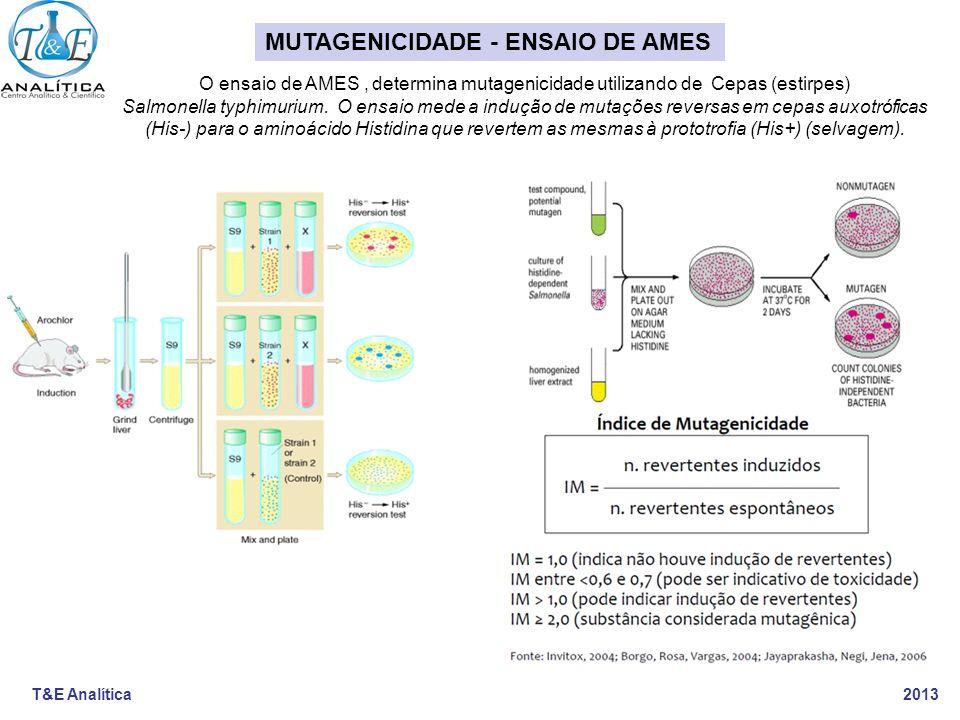 T&E Analítica 2013 O ensaio de AMES, determina mutagenicidade utilizando de Cepas (estirpes) Salmonella typhimurium. O ensaio mede a indução de mutaçõ