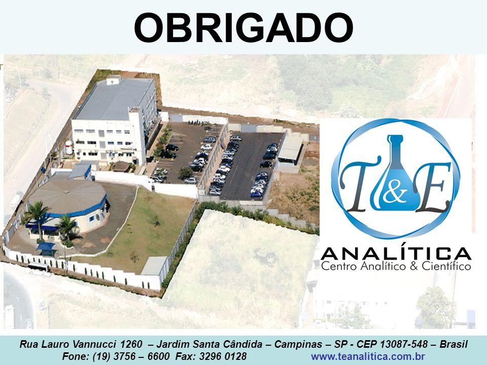 T&E Analítica 2013 OBRIGADO Rua Lauro Vannucci 1260 – Jardim Santa Cândida – Campinas – SP - CEP 13087-548 – Brasil Fone: (19) 3756 – 6600 Fax: 3296 0