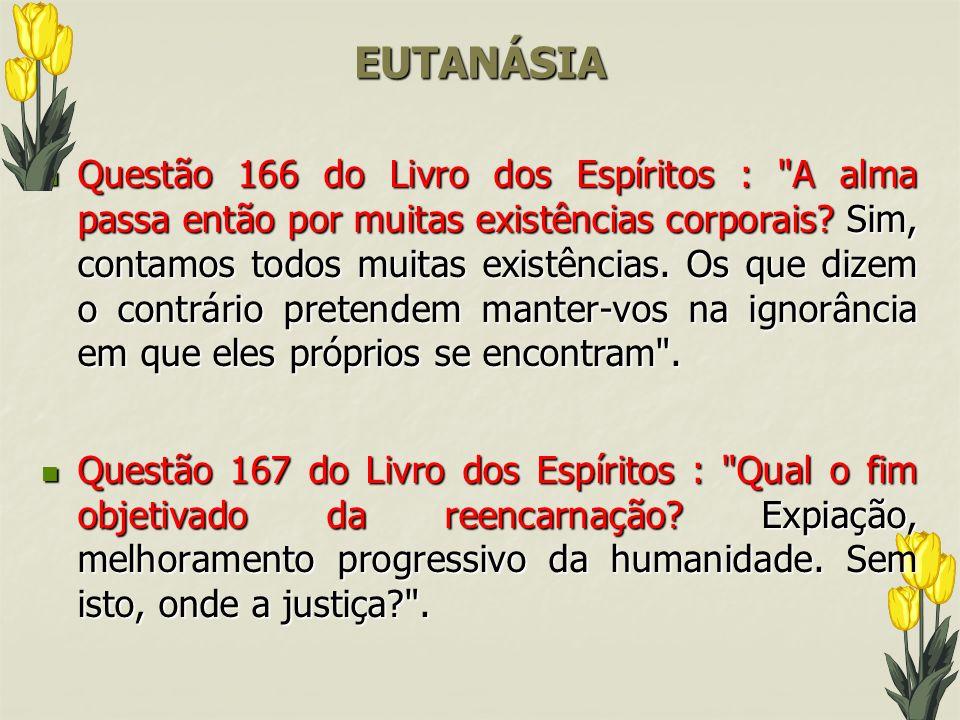 EUTANÁSIA Questão 166 do Livro dos Espíritos :