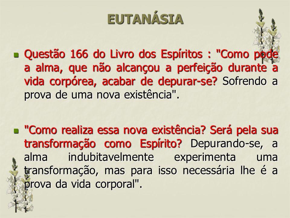 EUTANÁSIA Por que a doutrina espírita não aceita a EUTANÁSIA? Questão 132 do Livro dos Espíritos :