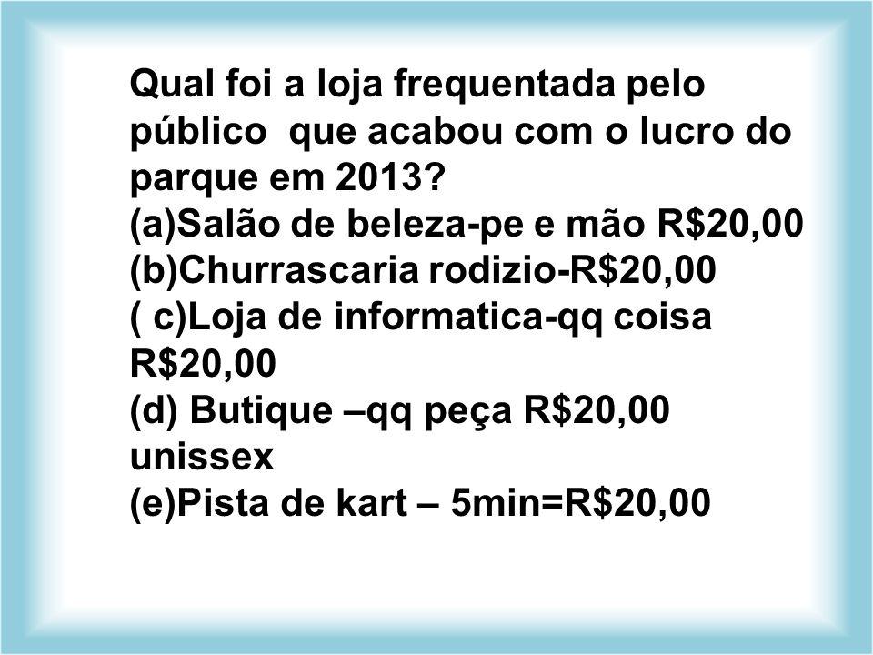 Qual foi a loja frequentada pelo público que acabou com o lucro do parque em 2013? (a)Salão de beleza-pe e mão R$20,00 (b)Churrascaria rodizio-R$20,00