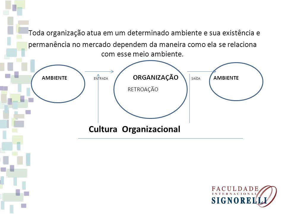 Toda organização atua em um determinado ambiente e sua existência e permanência no mercado dependem da maneira como ela se relaciona com esse meio amb