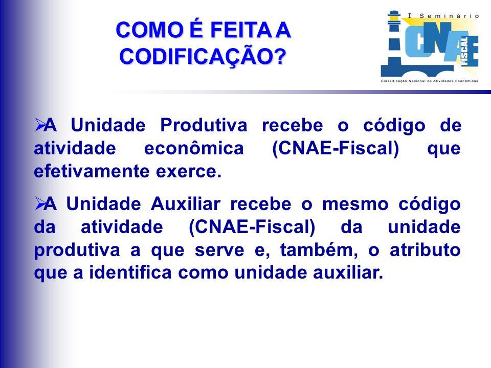 A Unidade Produtiva recebe o código de atividade econômica (CNAE-Fiscal) que efetivamente exerce. A Unidade Auxiliar recebe o mesmo código da atividad