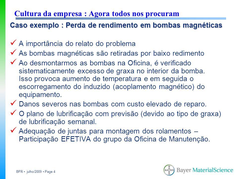 BFR julho/2009 Page 4 Caso exemplo : Perda de rendimento em bombas magnéticas A importância do relato do problema As bombas magnéticas são retiradas p