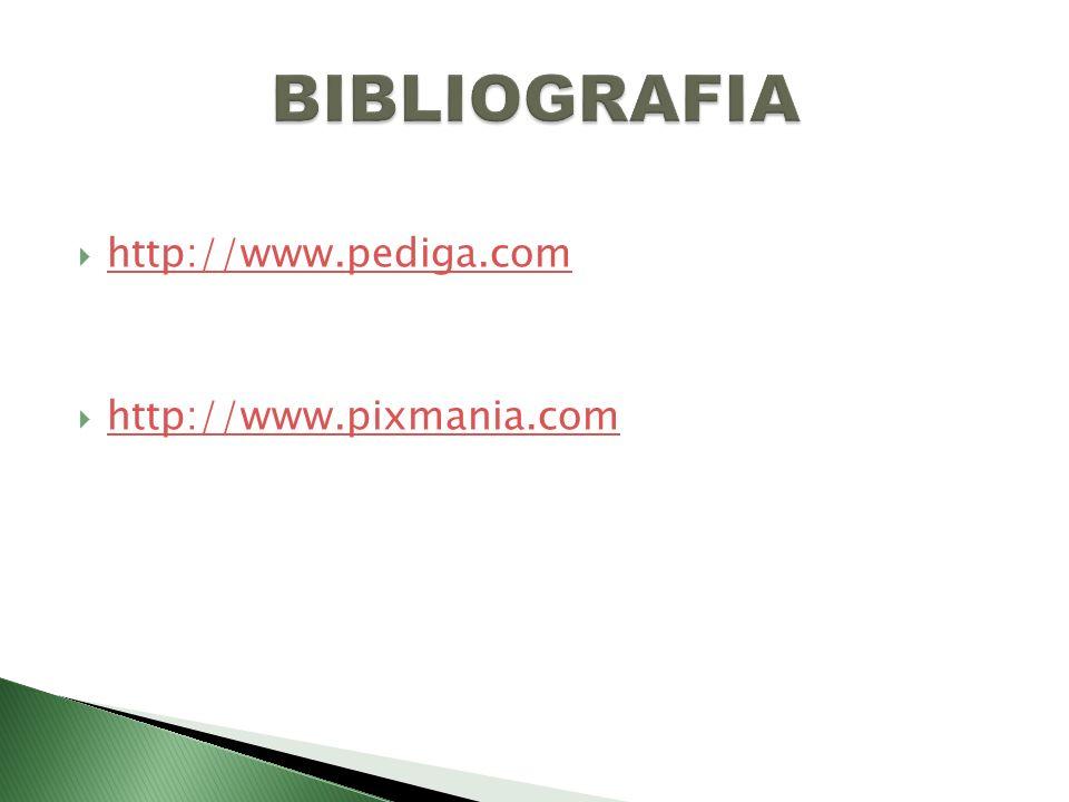 http://www.pediga.com http://www.pixmania.com