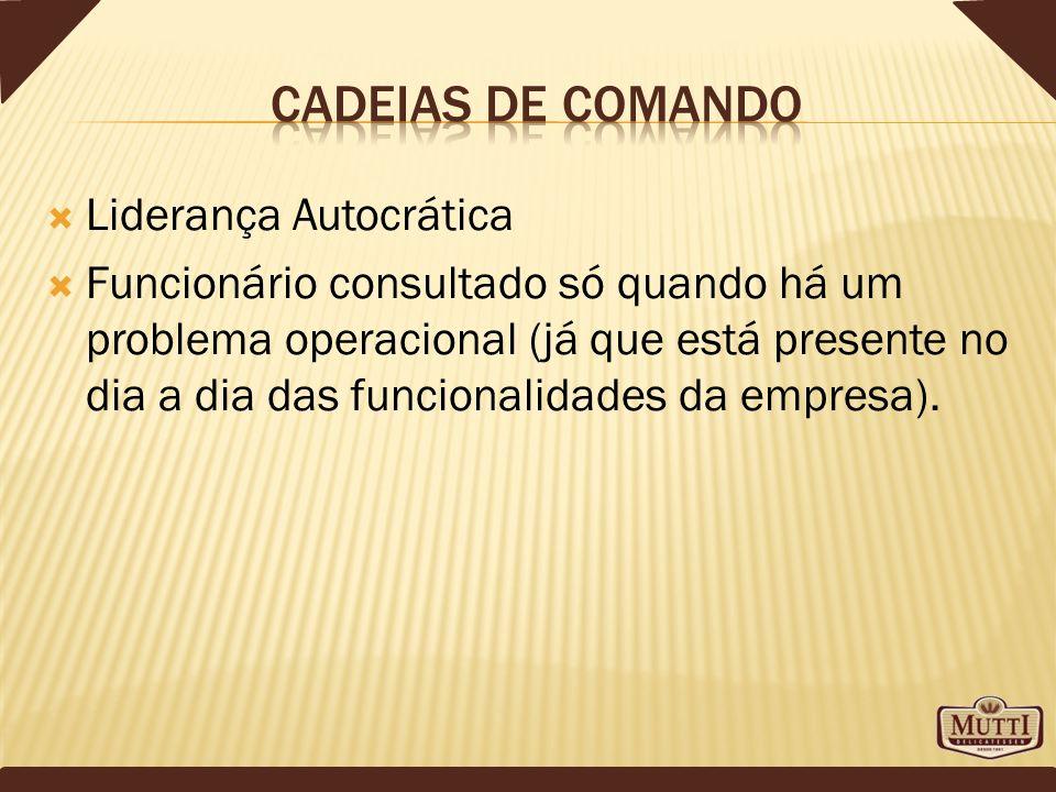 Liderança Autocrática Funcionário consultado só quando há um problema operacional (já que está presente no dia a dia das funcionalidades da empresa).